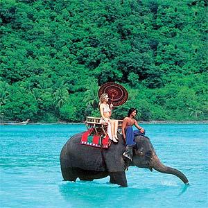 Ride on an elephant