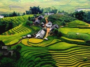 VIETNAM IMAGE (5)